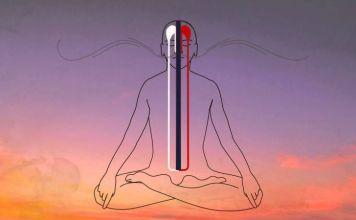 tsa lung energy channels