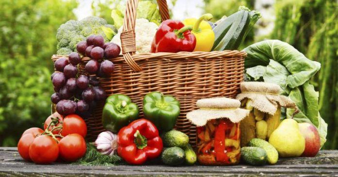 oganic food