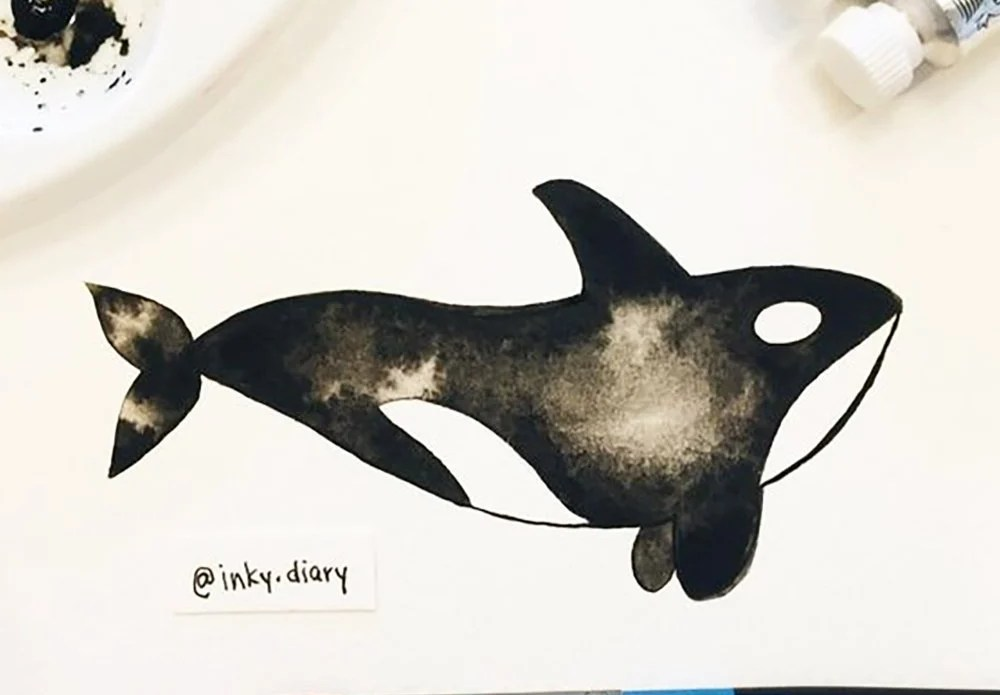 easy animal drawing ideas - whale