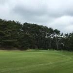 大洗ゴルフ倶楽部は松 松 松 そして松だった。