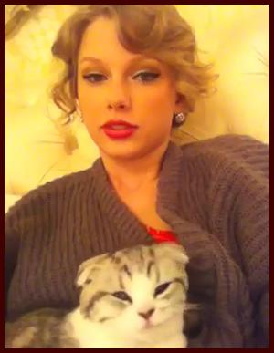 Taylor Swift Meredith Kitten
