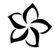 fiore tiare tattoo cosa significa