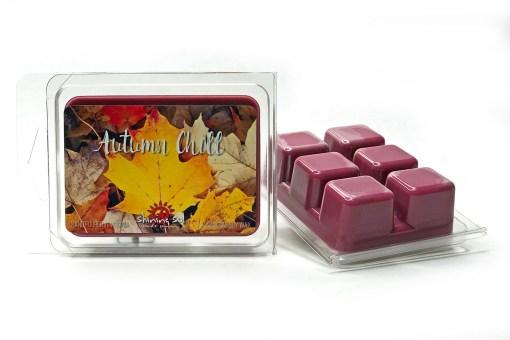 Autumn Chill - Wax Melt