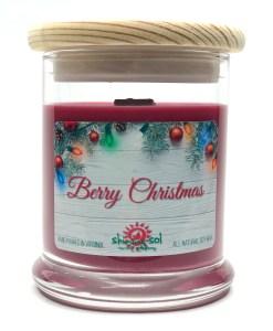 Berry Christmas - Medium Jar Candle