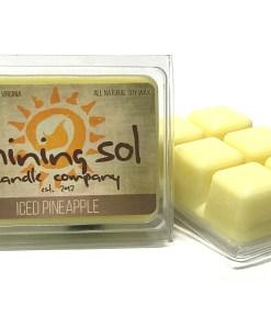 Iced Pineapple - Wax Melt