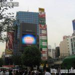 Crónicas de Japón 2007 (Día 12 – Tokyo)