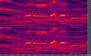 スペクトラム画像