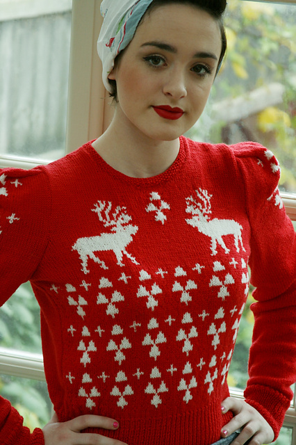 The Perfect Christmas Jumper by Susan Crawford. Image Copyright Susan Crawford.