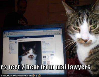1_facebook-kitty-lawyers-up.jpg