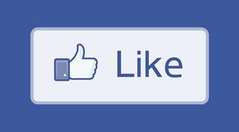 facebook-like-smallt.jpg