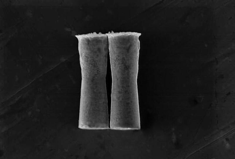 miniature-micromotors-stomach-acid