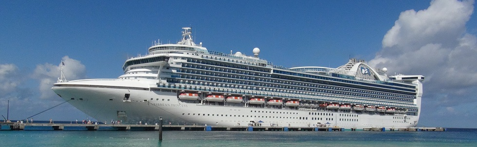 Image result for caribbean princess ship