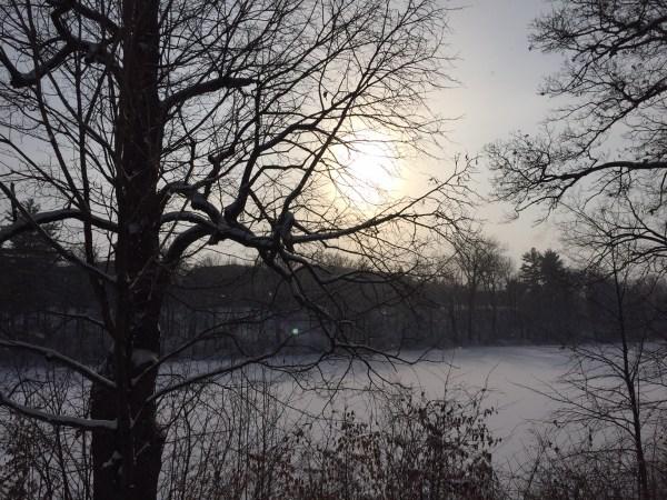 Stumpf Lake outside cottage #7. December view.