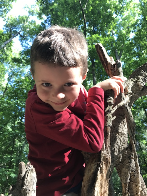 Grandson Owen, tree climber.