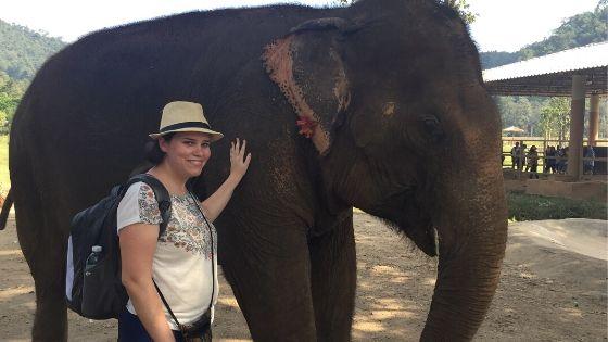 ביקור בחוות הפילים בתאילנד