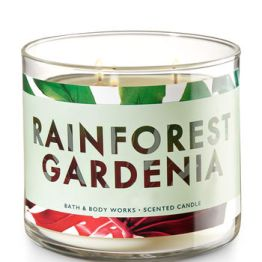RAINFOREST GARDENIA