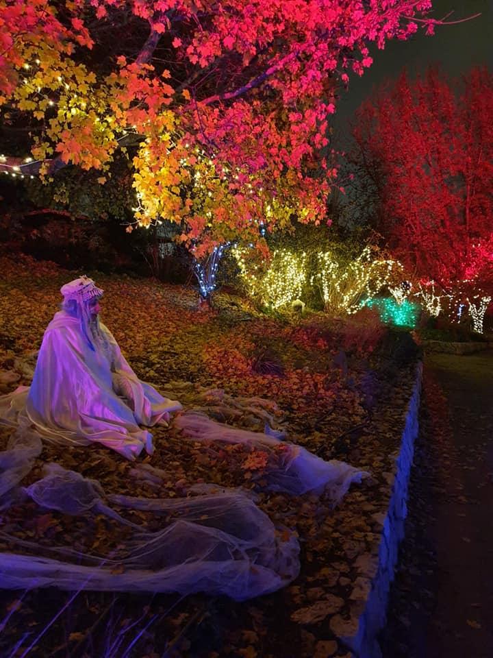 פסטיבל אורות בירושלים - כריסמס בירושלים