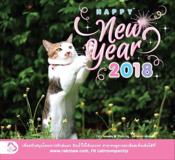 ปฏิทินโครงการรักษ์แมว_rakmaw_calendar_2018