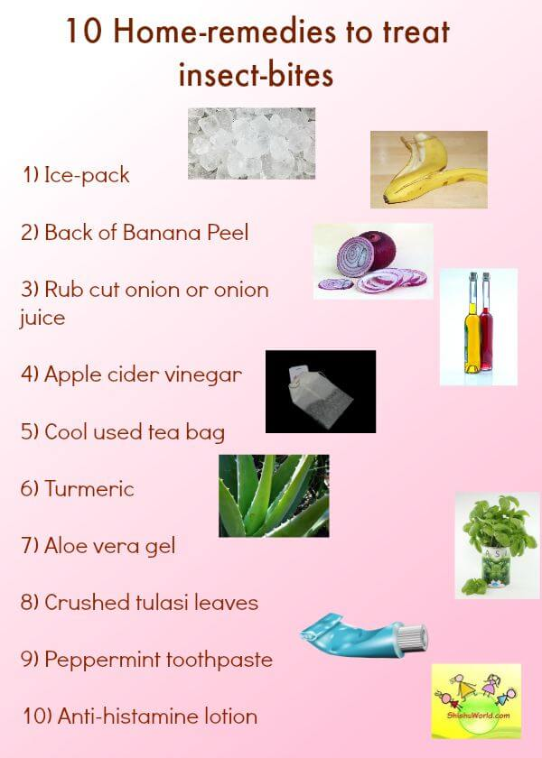 First Aid Home Remedies For Insect Bites