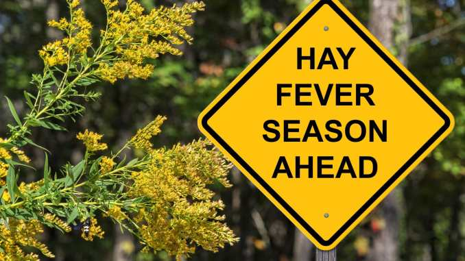 Road sign that reads Hay fever season ahead
