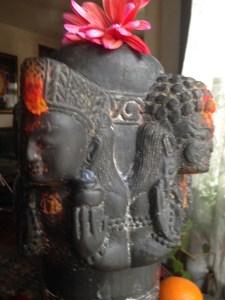 SSM heads-Shiva Lingam