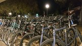 Only bicycles are allowed in the Stanford Campus