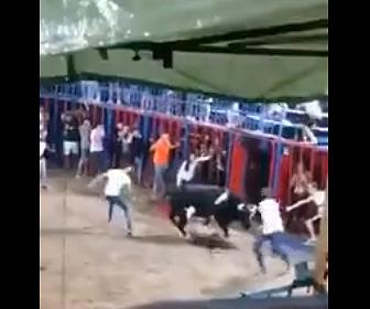 【動画】暴れ牛の攻撃で柵が壊れ12歳少年が闘牛場に落下してしまい…