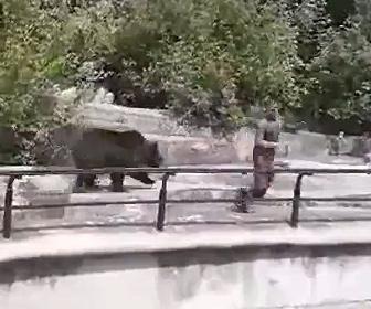 【動物】動物園で酔っ払った男がクマの敷地内に侵入。男にクマが近づくが…