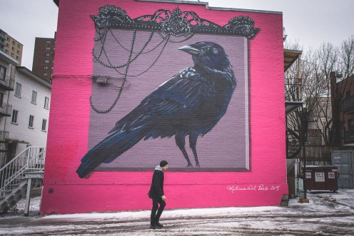 Montreal Wall Paints-4