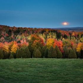 Cantons de l est automne
