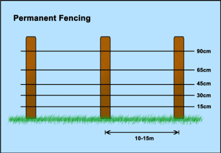 Help advice shockrite electric fencing permanent electric fencing spacing for sheep high tensile steel wire with timber posts greentooth Images