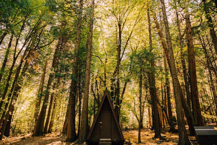 Yosemite_JustinSullivan-13