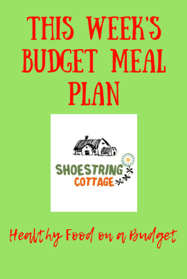 Slimming World on a budget