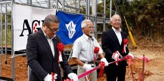 (左から)味の素AGF・石川裕取締役副社長、徳之島コーヒー生産者会・吉玉誠一代表、大久保明町長
