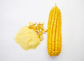 遺伝子組換え表示基準 糖類、油は適用除外 米農務省が策定