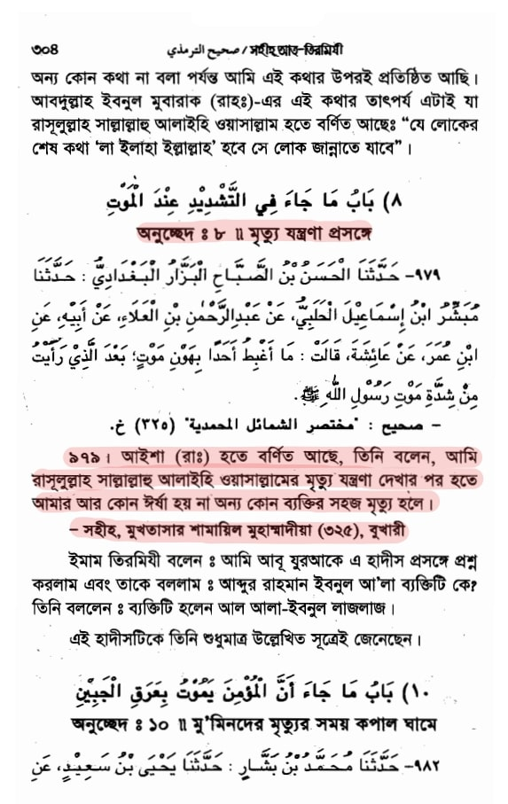 মুহাম্মদের মৃত্যু যন্ত্রণা
