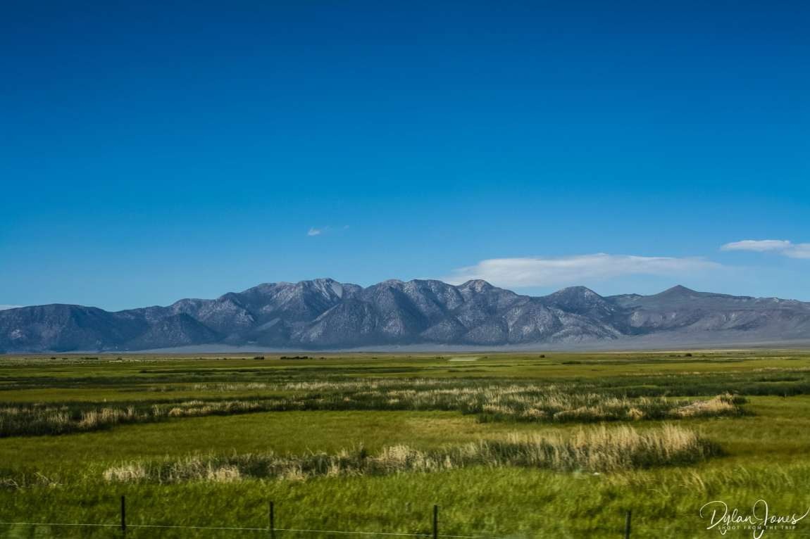 Eastern Sierra green meadows and mountains