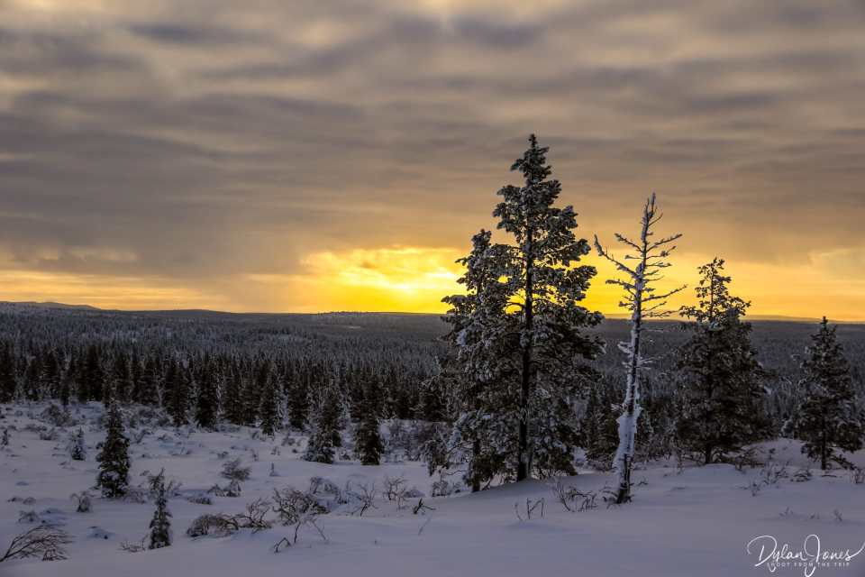 Stunning sunset views from the top of the Ahopää Fell, Saariselkä Lapland