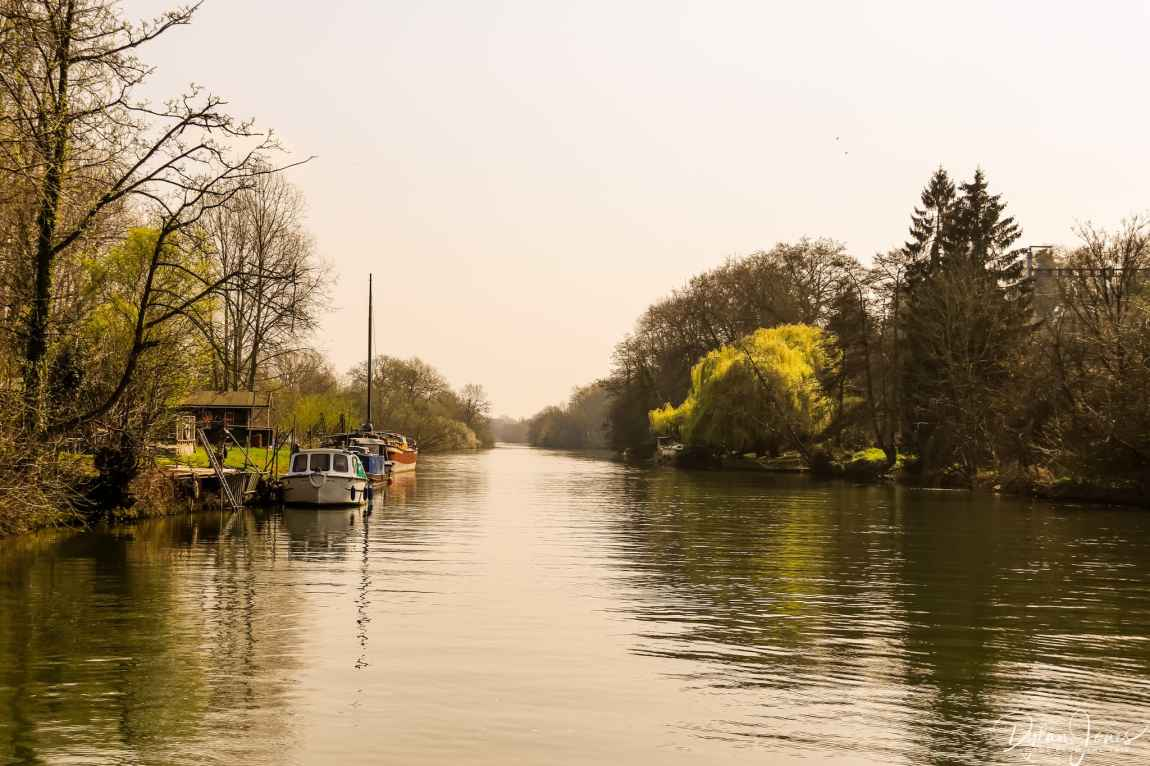 Boats docked along a calm section of the River Thames