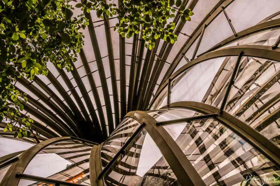 Botanical Glasshouse details