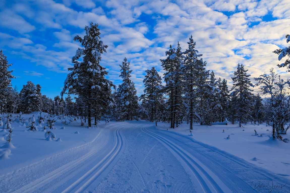 Cross country ski trails at Kakslauttanen Arctic Resort East Village