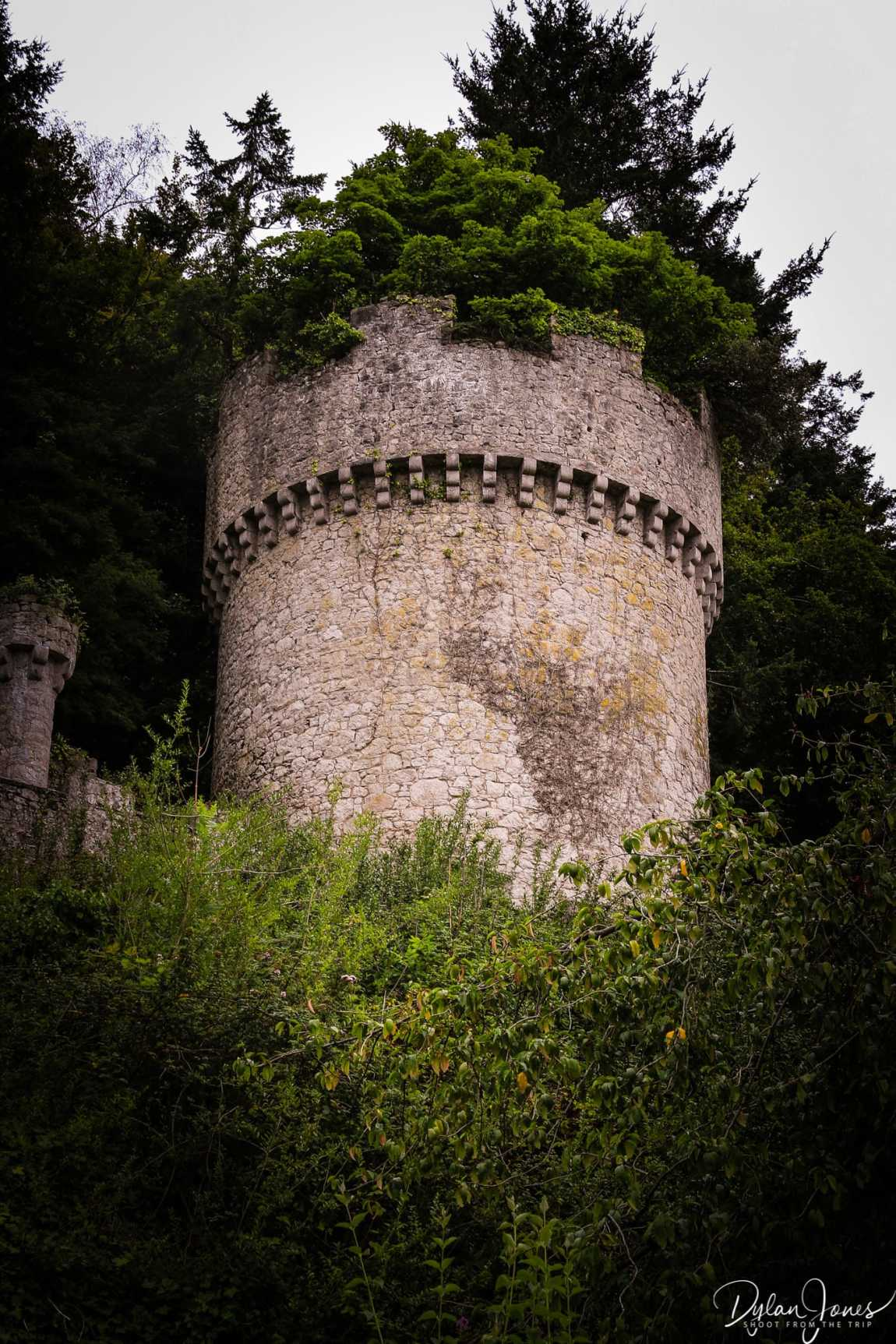 A tower of Gwrych Castle reclaimed by nature