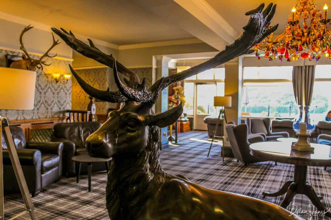 The lounge area with stag statute