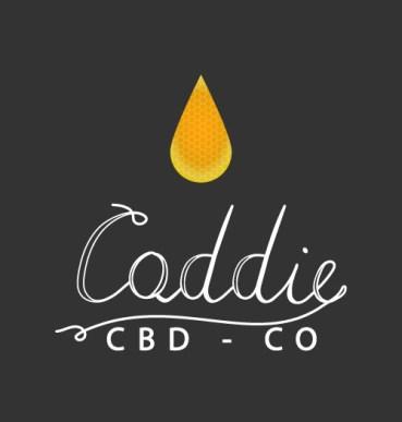 """Il logo di """"Caddie"""" realizzato con script calligrafico del nome azienda e con l'aggiunta di un visual"""