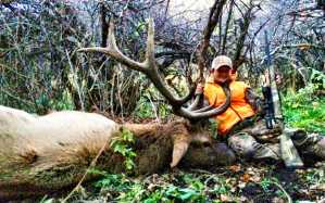 trophy outfitters bull elk
