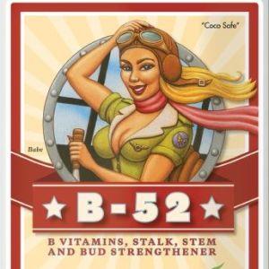 b52-1lt-advance-nutrients