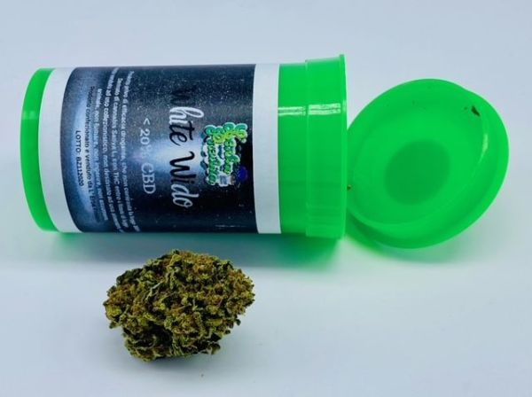 Cannabis legale White Widow CBD