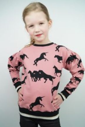 stoffenfeest chat chocolat sweater naaien glitterboord albstoffe