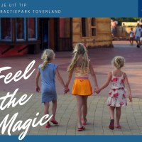 Dagje uit: Ervaar de magie in Toverland