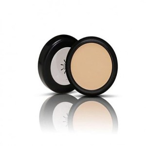 Missha The style perfect concealer_light beige